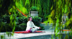 ananda meditation