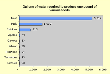 foodwateruse