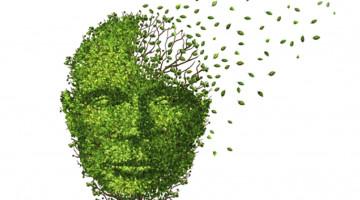 leafy-head