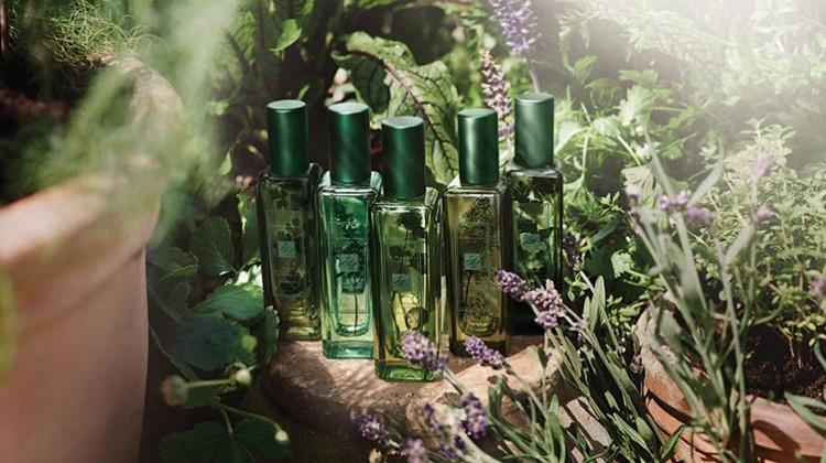 The-Herb-Garden760x420