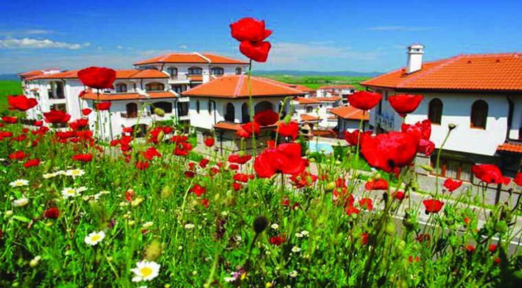 poppy-field-vineyard-bulgaria760x420