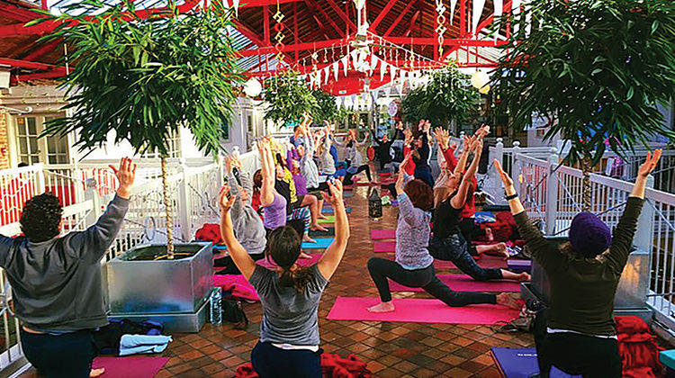 Yoga Life Studio show 2016